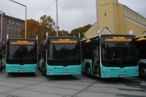 P_Bus_EOT_Lions_City-01