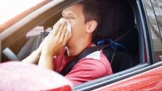 Wakacyjne wyjazdy budzą u alergików mieszane uczucia – z jednej strony piękna […]