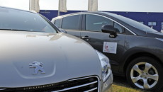Peugeot Polska oraz Związek Piłki Ręcznej w Polsce nawiązały współpracę przy organizacji […]