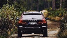 12 000 nowych drzew zostanie posadzonych w Tatrach – tak zdecydowali internauci […]