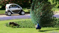 """W Galerii Plenerowej Łazienek Królewskich można obejrzeć wystawę """"Renault Easy City. Think […]"""