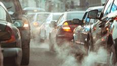 Dzieci należą do grupy najbardziej narażonej na niekorzystne skutki zdrowotne oddychania zanieczyszczonym […]